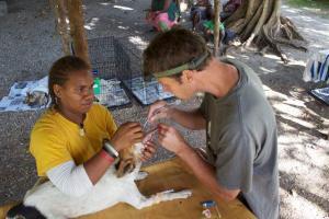 Duncan intubates an Island dog