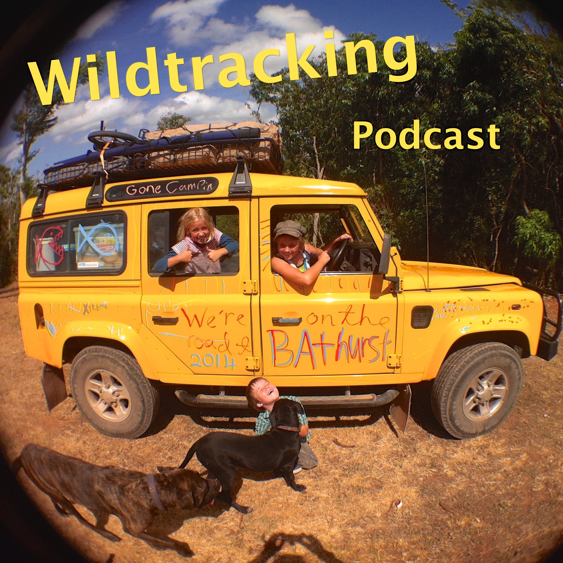 Wildtracking